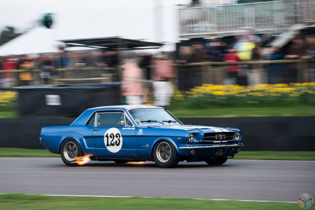 Goodwood 2017 - 75th Members Meeting